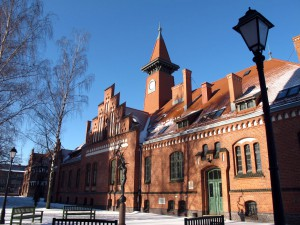 Institute of Baltic Region History and Archaeology